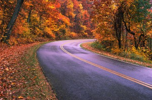 Road Through Great Smokies