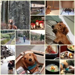 犬バカ12_2