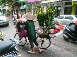 vietnam8