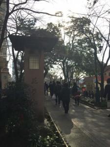 大劇場前の遊歩道「花の道」。大正時代から女学校宝塚を見守っています。